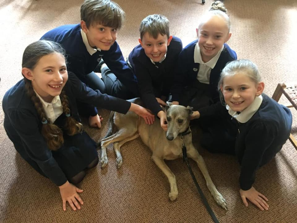 langenhoe-children-and-taz-dog