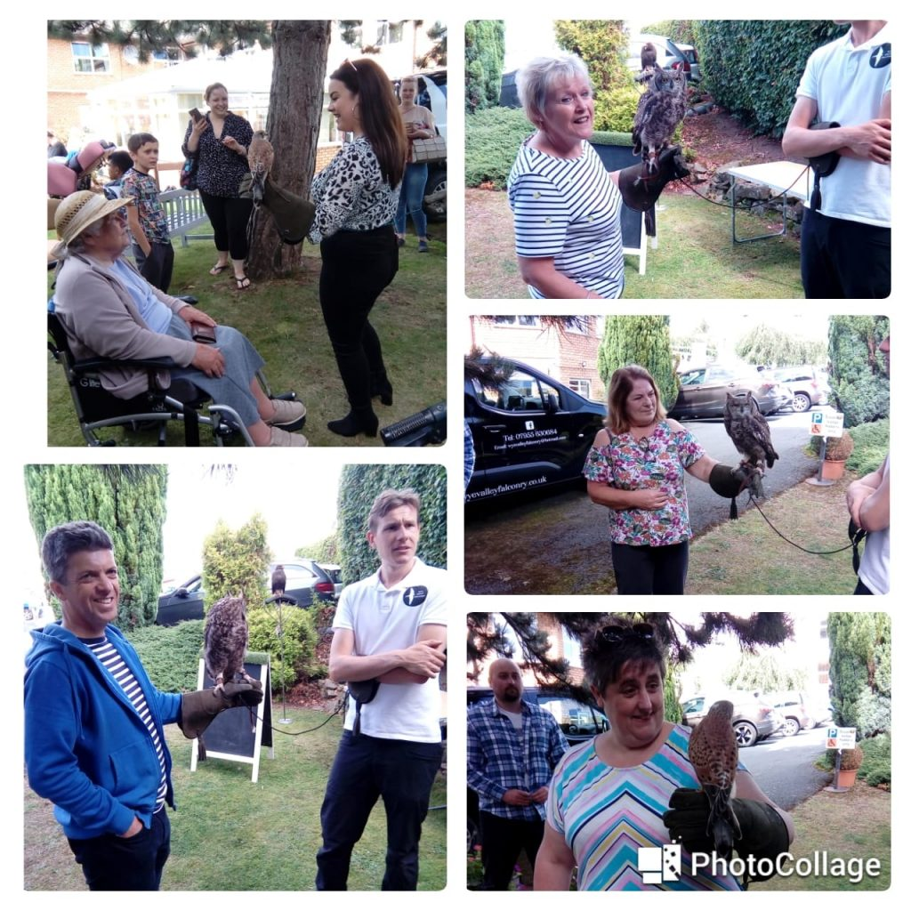 Falconry Newstead fete