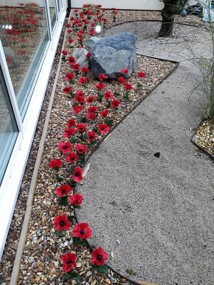 Poppy remembrance display - The Lawns 2019