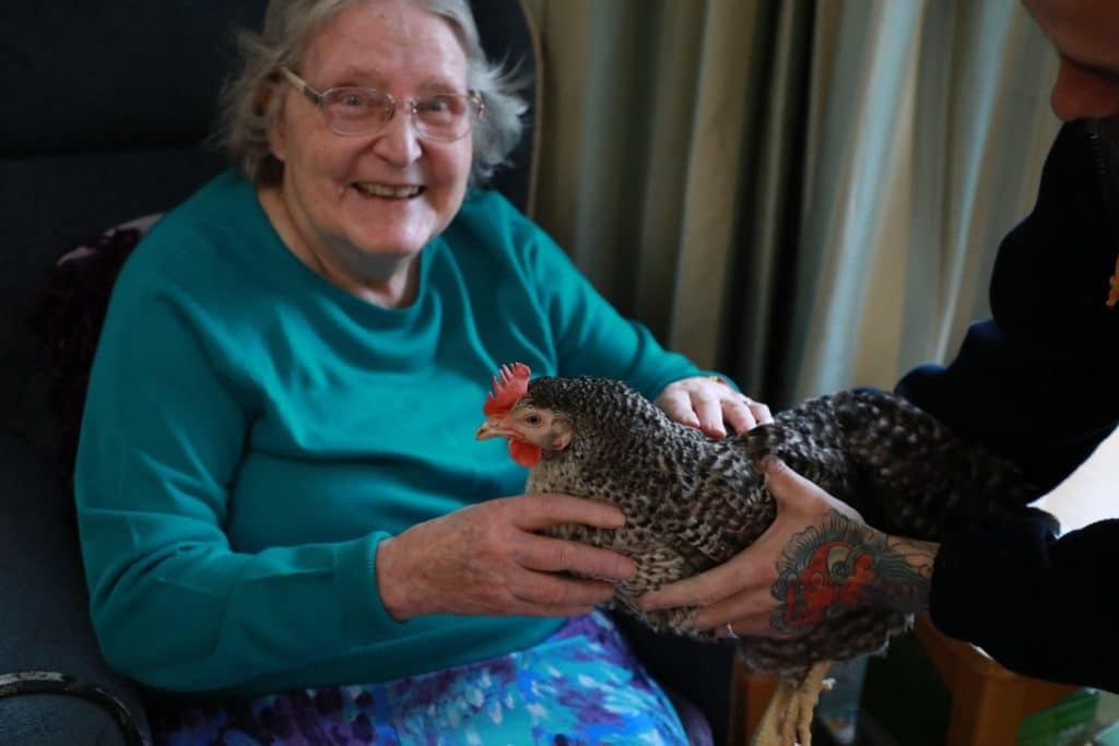 Resident smiling and socialising a chicken