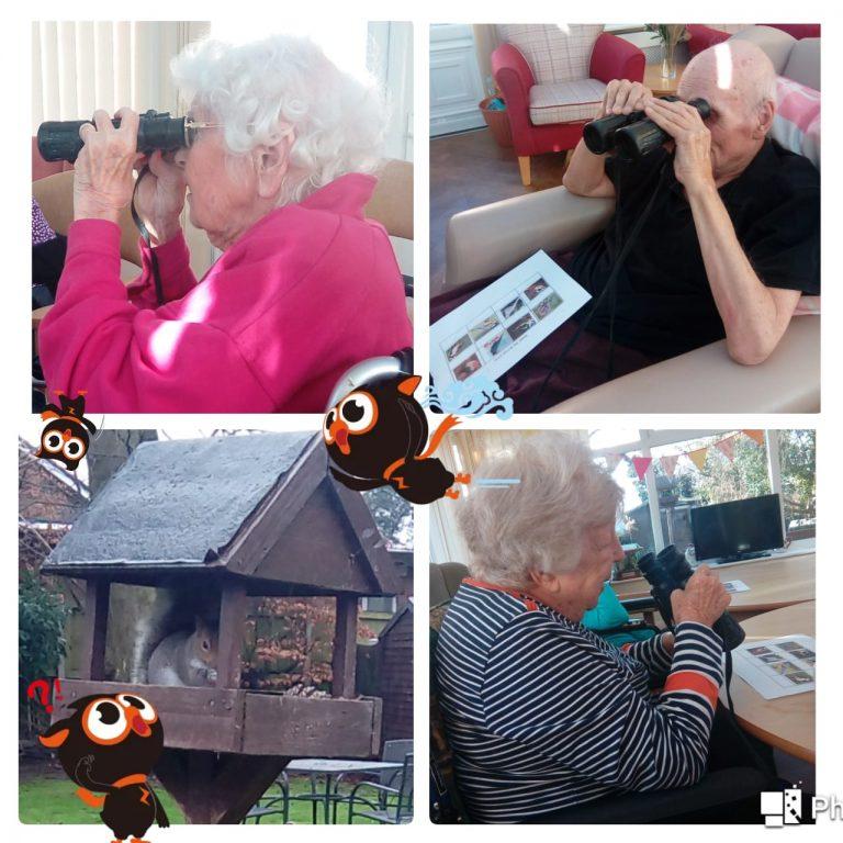 garden bird watch - photo montage of our bird watchers
