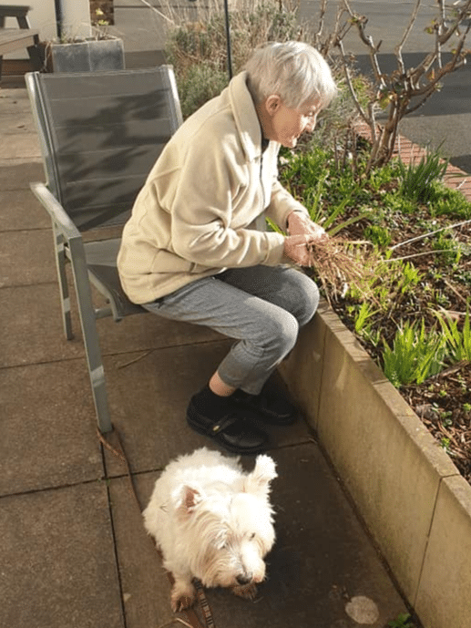 making our house a home - resident gardening with white dog