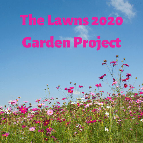 The lawns 2020 Garden Project