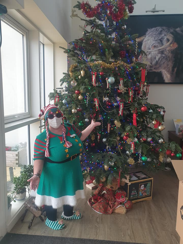 The lawns 20ft tree