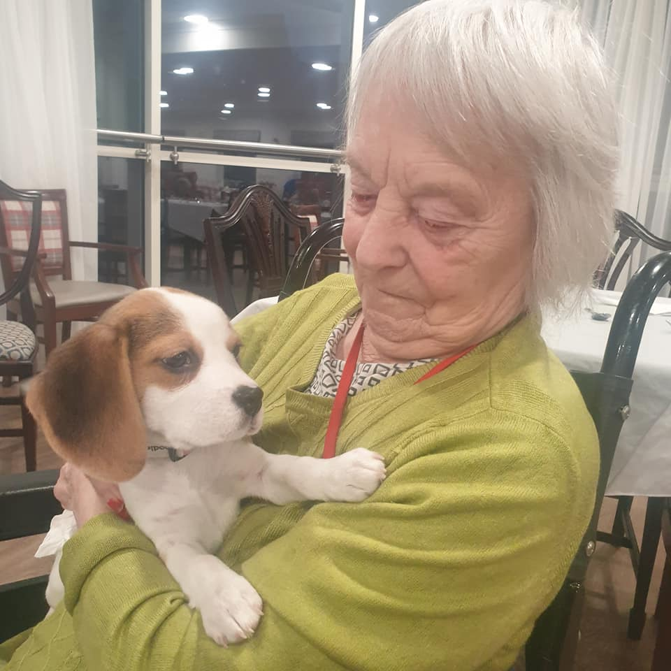 Norma and puppy
