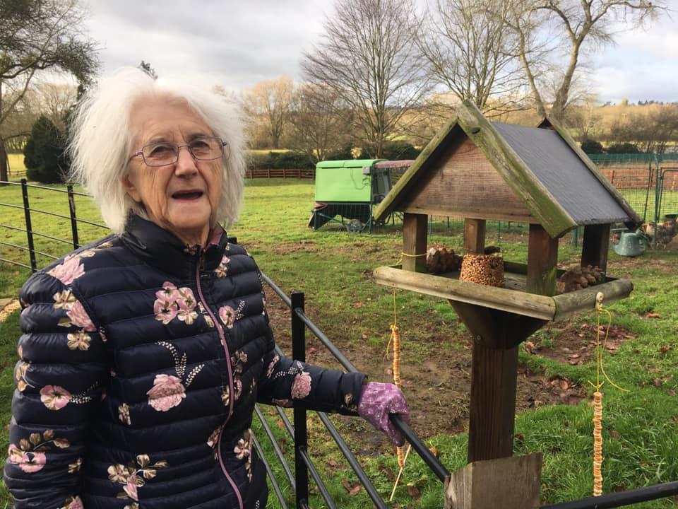 Big Garden bird watch - resident with bird feeders