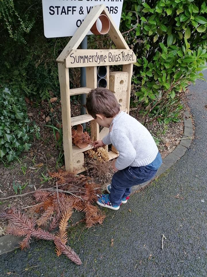 Adding to the bug Hotel for Summerdyne garden 2